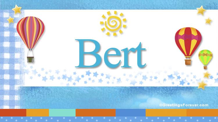 Bert, imagen de Bert
