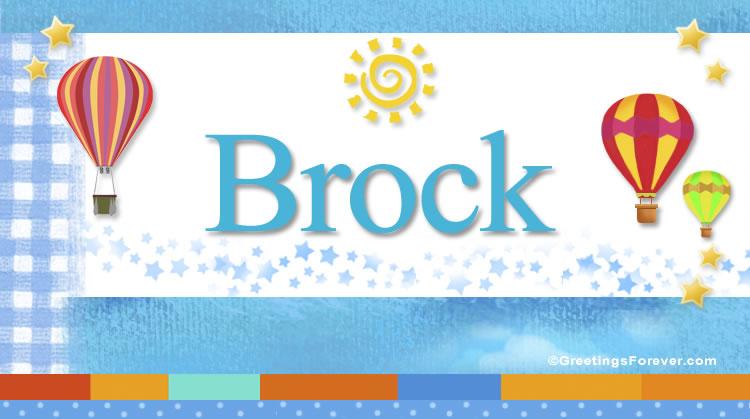 Brock, imagen de Brock