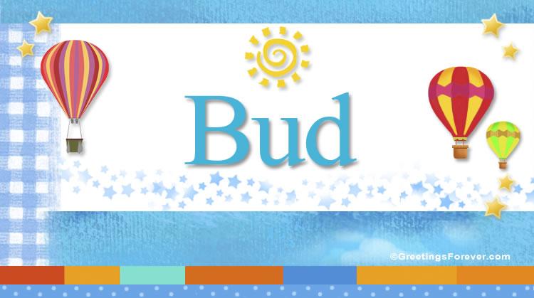 Bud, imagen de Bud