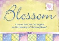 Name Blossom
