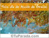 Tarjetas postales: Feliz día de Acción de Gracias con lago