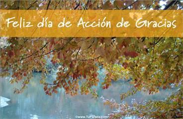 Tarjetas, postales: Día de Acción de Gracias