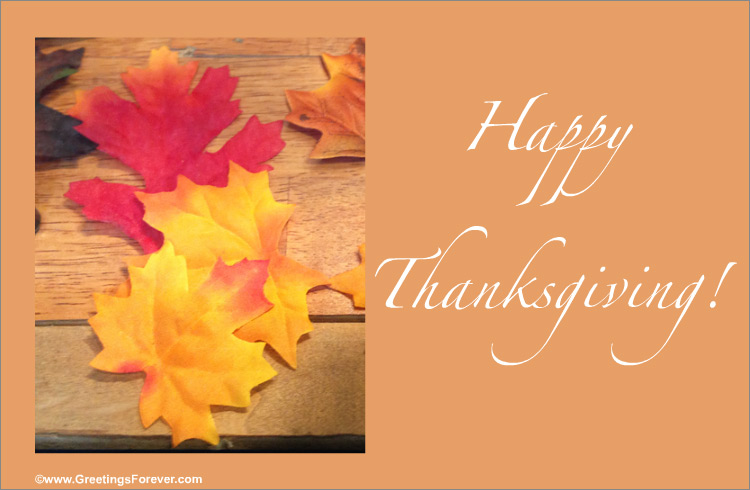 Ecard - Thanksgiving egreeting