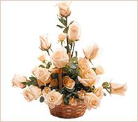Arreglo en canasta de 12 rosas color té