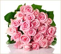 Veinticuatro rosas rosadas en gran ramo