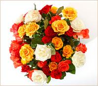 Flores a todo el mundo