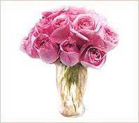 Una docena de rosadas rosas en florero