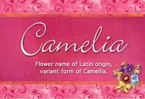 Name Camelia