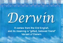 Name Derwin