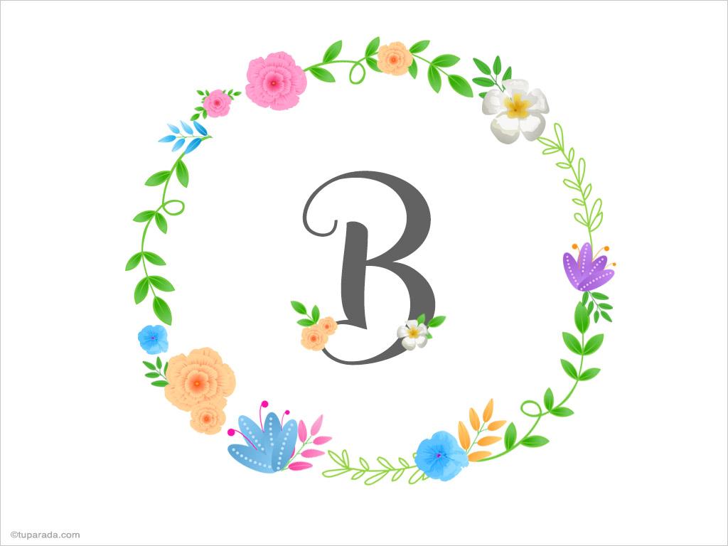 Tarjeta - Inicial B