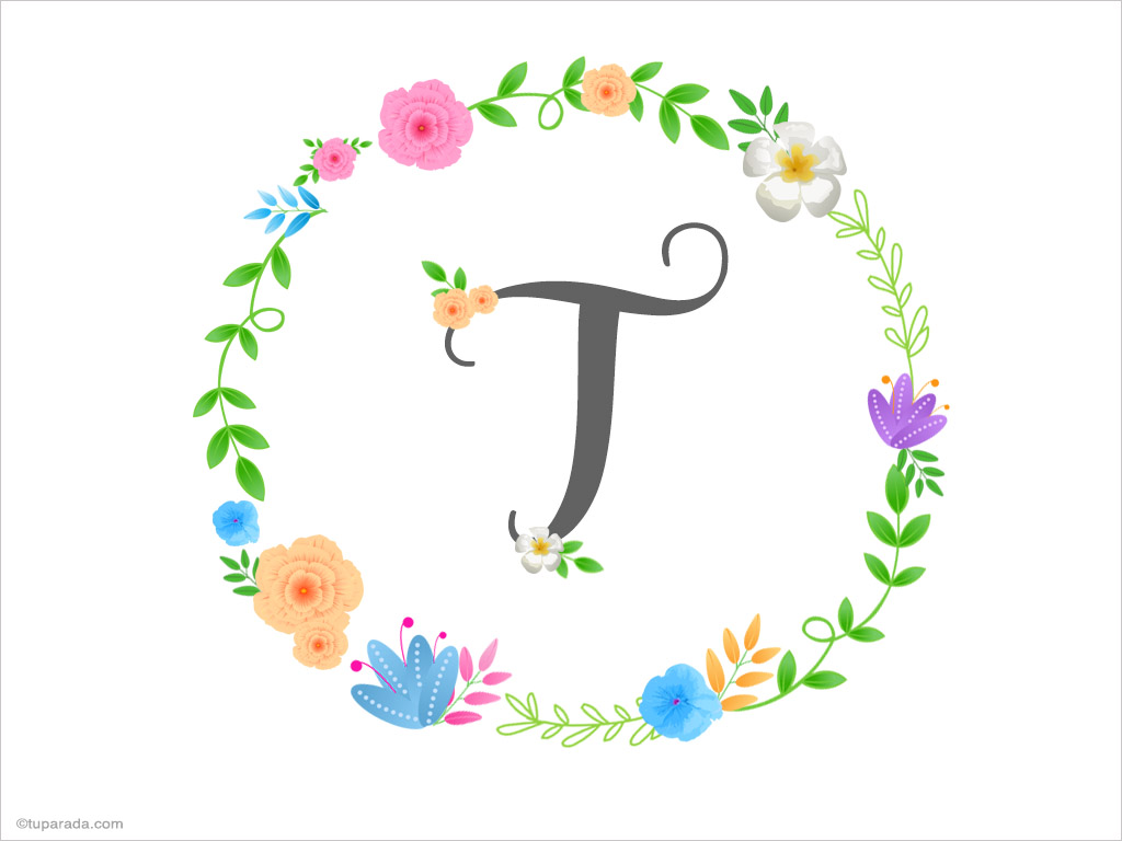 Tarjeta - Inicial T