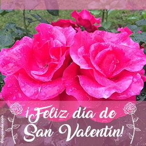 Feliz día de San Valentín con flores