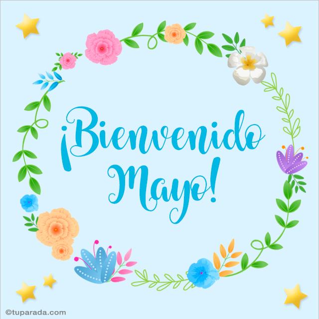 Tarjeta - Bienvenido mayo
