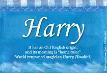 Name Harry