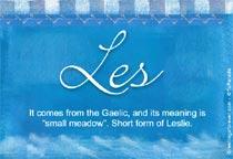Name Les