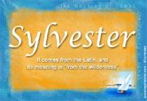 Name Sylvester