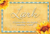 Name Lark