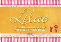 Name Lilac