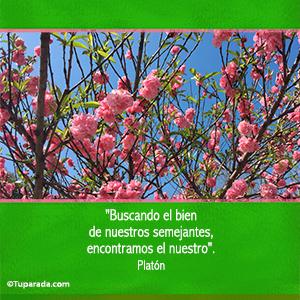 El bien - De Platón