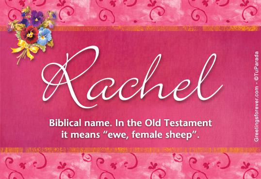 rachel name meaning rachel name origin name rachel meaning of