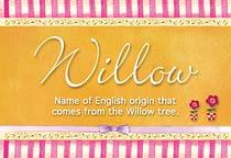 Name Willow