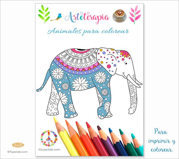 Ebook: Arteterapia - Animales para colorear