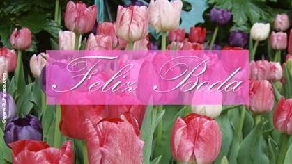 Tarjeta de feliz boda con tulipanes