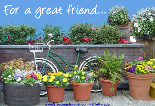 Ecard - For a great friend