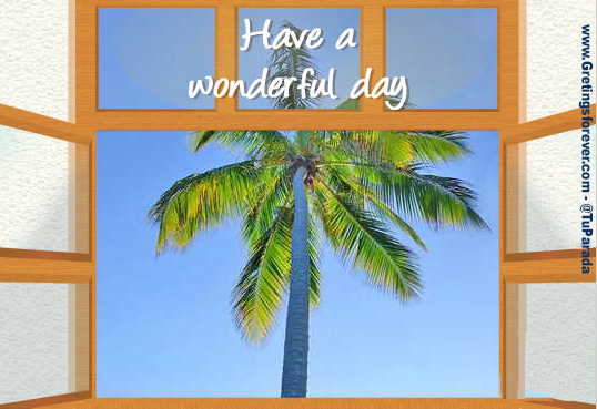 Have a wonderful day!