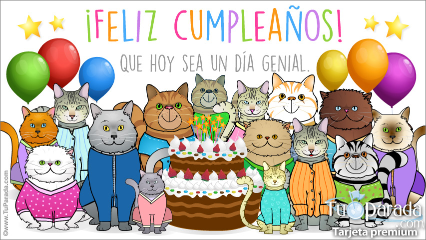 Tarjeta - Tarjeta de cumpleaños con gatos