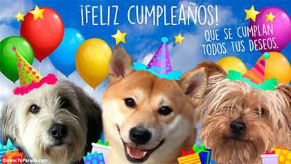 Feliz cumpleaños con muchos saludos
