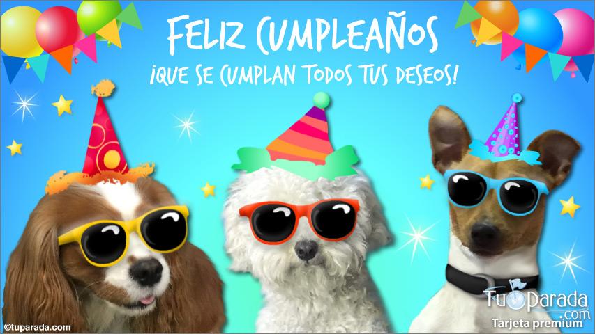 Tarjeta - Feliz cumpleaños con anteojos negros