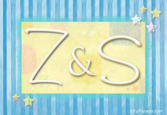 Z & S
