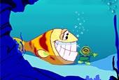 Sea bottom