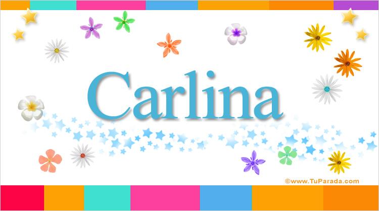 Carlina, imagen de Carlina