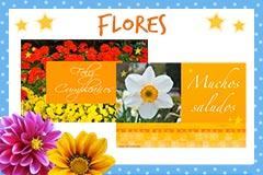 Modelos de flores