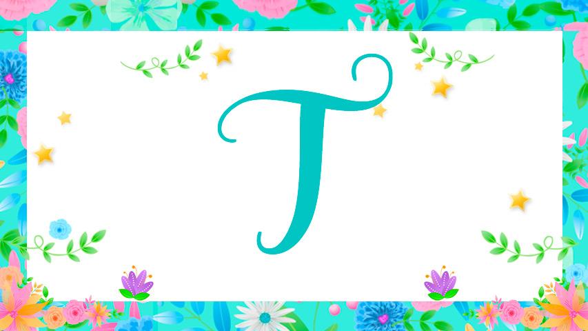 Nomes com T