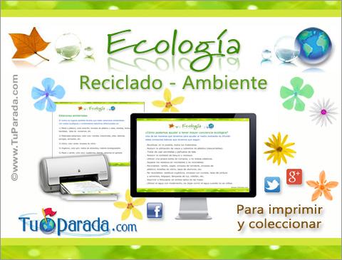 Ver fecha especial de Día mundial del Medio Ambiente