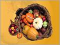 28 - Día de Acción de Gracias