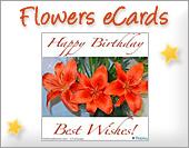 Ecards: Flowers eCards